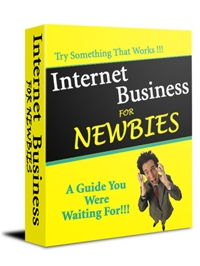 Internet Business for Newbies Cover