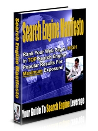 Search Engine Manifesto Cover