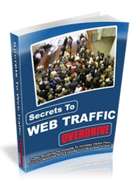 Secrets to Web Traffic Cover